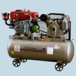 Máy nén khí chạy dầu Pegasus TM-V-1.05/12.5 - 500L