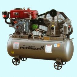 Máy nén khí PEGASUS TMV-0.48/16/ZG-C