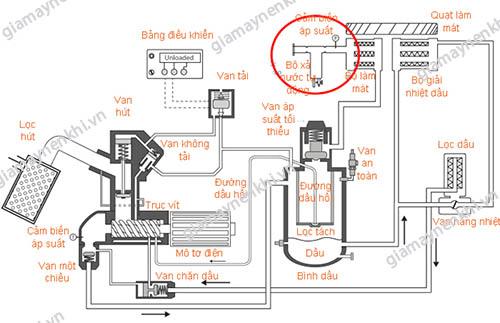 Vị trí van xả nước tự động ở máy nén khí