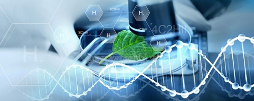 Chế tạo sinh học nhờ khoa học