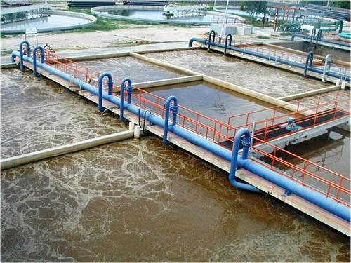 hệ thống máy móc trong các ngành thủy sản
